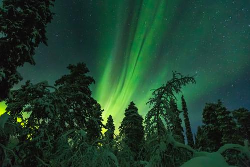 Lapland Kuzey Isiklari Turu